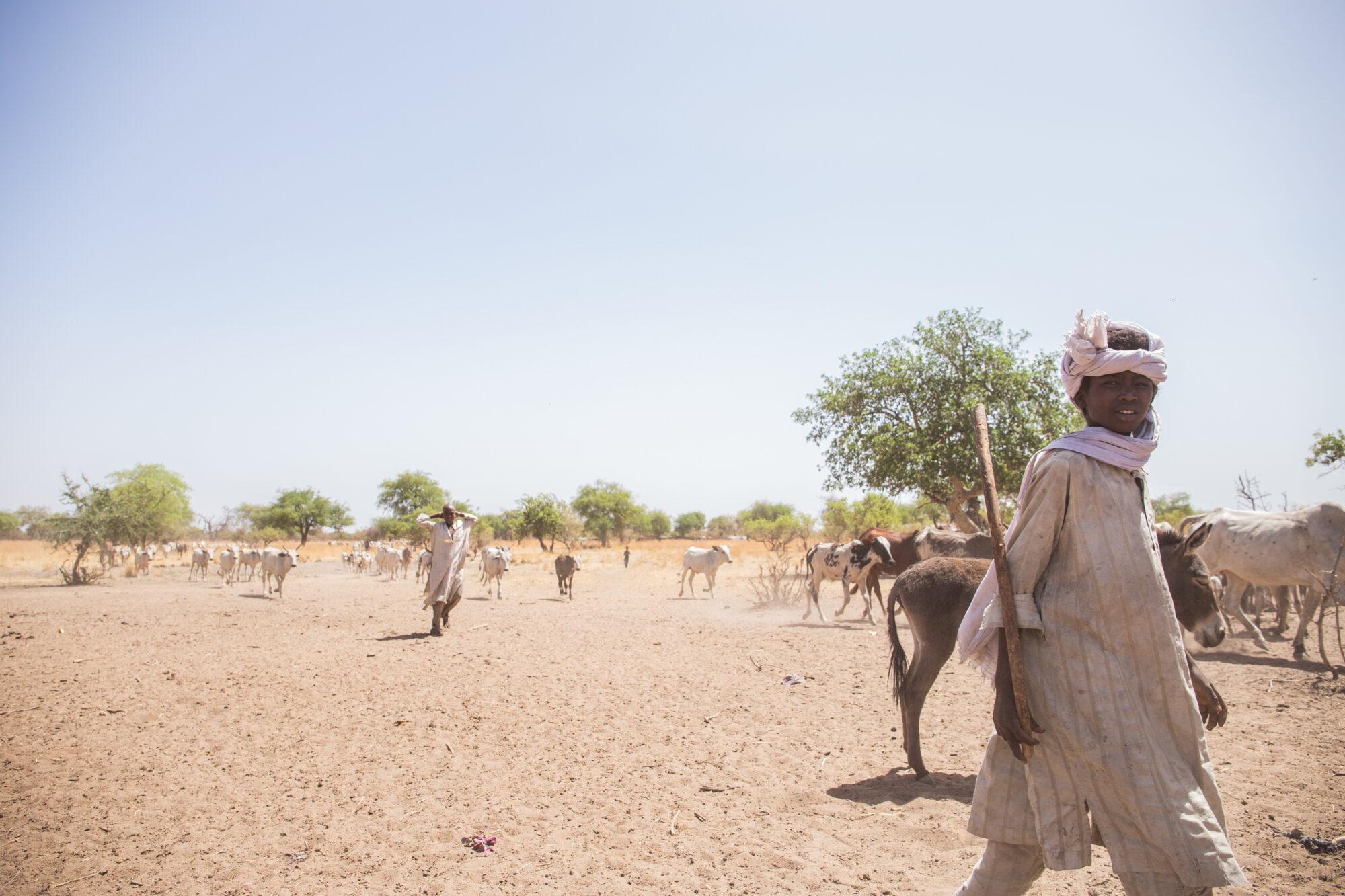 Paimentolaispoika matkalla hakemaan rokotetta keskellä aavikkoa.